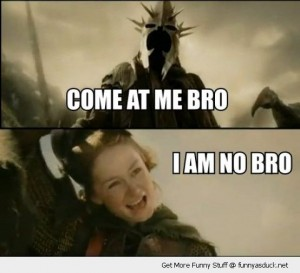 funny-lord-of-the-rings-movie-come-at-me-bro-i-am-no-man-kill-me-pics