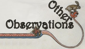 other-observations